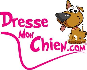 D.M.C-logo-de-la-marque.jpg