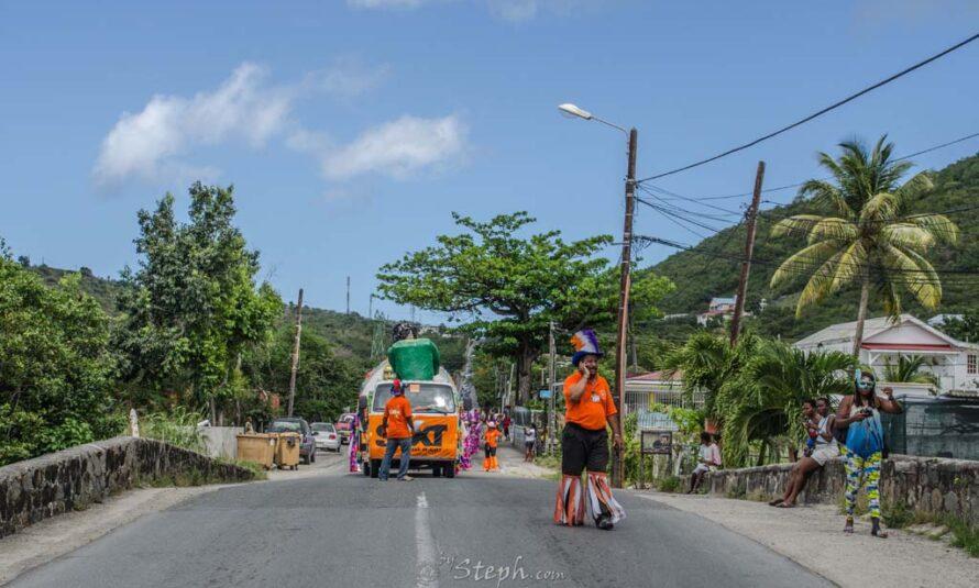 Carnaval 2014: Journée du Dimanche 2 Mars par Steph Déziles
