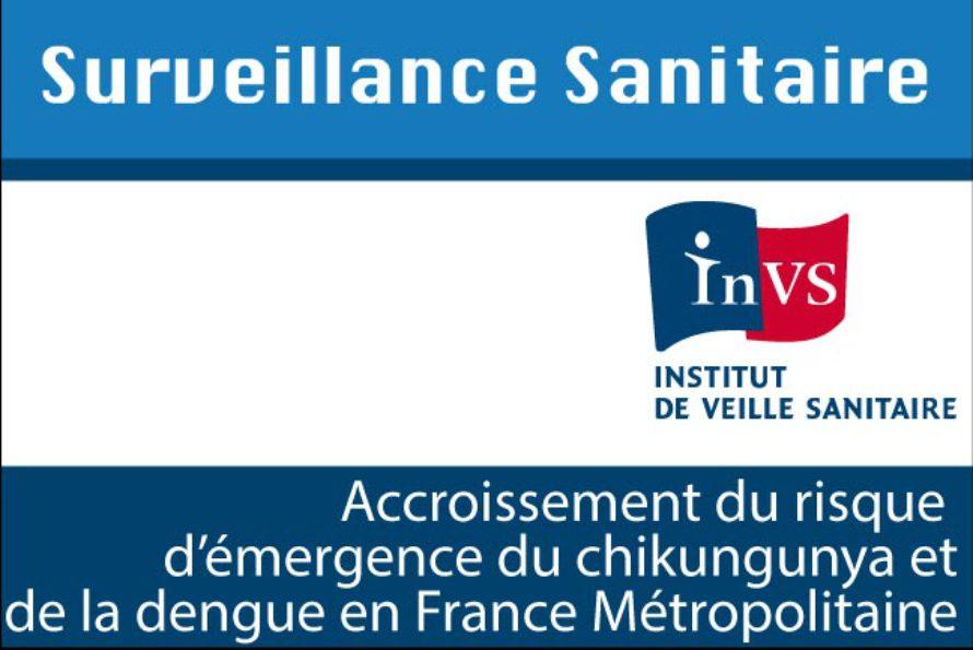 Santé. La dengue et le chikungunya s'invitent en France