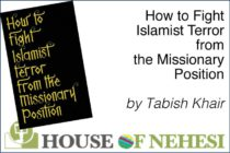 "Sint Maarten. ""How to Fight Islamist Terror from the Missionary Position"" by Tabish Khair"
