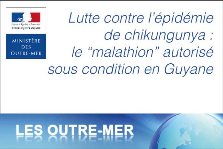 """Guyane – L'utilisation du """"malathion"""" autorisée de façon contrôlée dans le cadre de la lutte contre l'épidémie de chikungunya"""