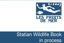Sint Eustatius – Field Research for Wildlife Book Begins