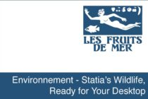 Environnement – Statia's Wildlife, Ready for Your Desktop