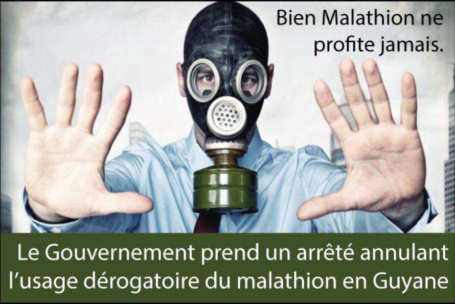 Le Gouvernement suspend en toute discrétion l'autorisation de l'usage du malathion en Guyane…