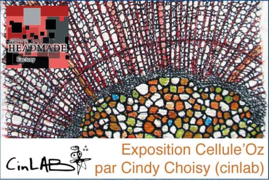 Saint-Martin – Exposition Cellule'Oz par Cindy Choisy (cinlab)