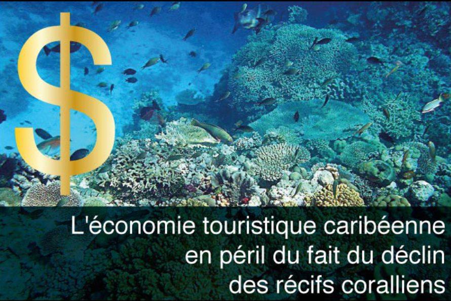 Tourisme – L'économie caribéenne en péril du fait du déclin des récifs coralliens…