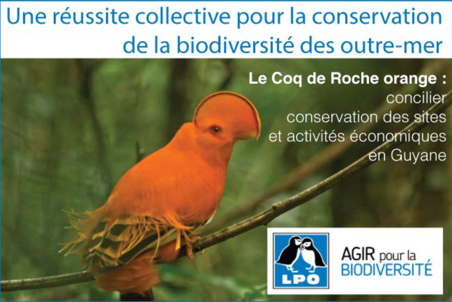 Une réussite collective pour la conservation de la biodiversité des outre-mer