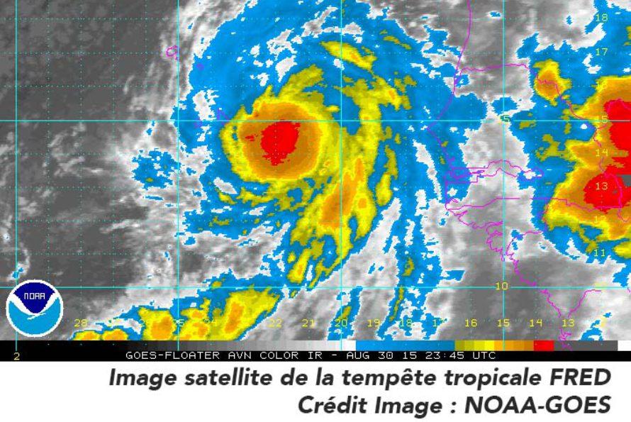 Tempête tropicale FRED – Prévisions