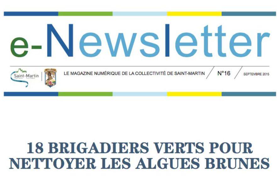 E-Newsletter n°16 – 18 BRIGADIERS VERTS POUR NETTOYER LES ALGUES BRUNES