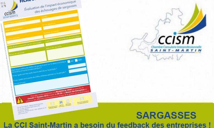 SARGASSES – La CCI Saint-Martin a besoin du feedback des entreprises !
