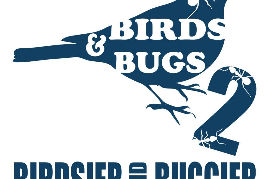 Divertissement Gratuit pour Tous les Âges à Birds & Bugs ce Dimanche!