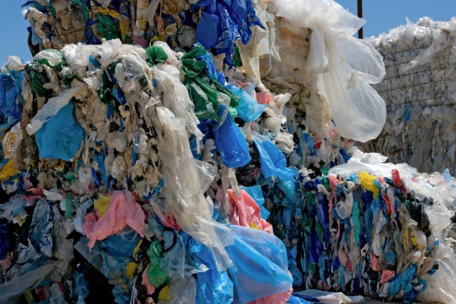 Interdiction des sacs plastique à usage unique en caisse à partir de juillet 2016
