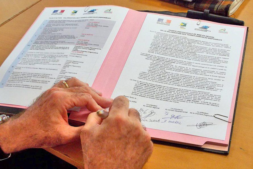Guadeloupe – Agriculture : Remettre en culture les terres en friche