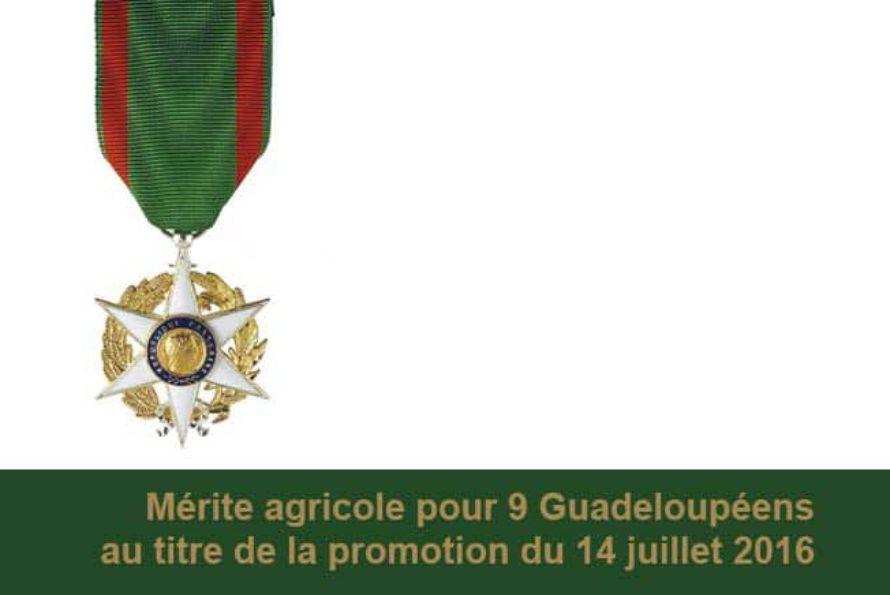GUADELOUPE : Distinction – Le Mérite agricole pour neuf guadeloupéens