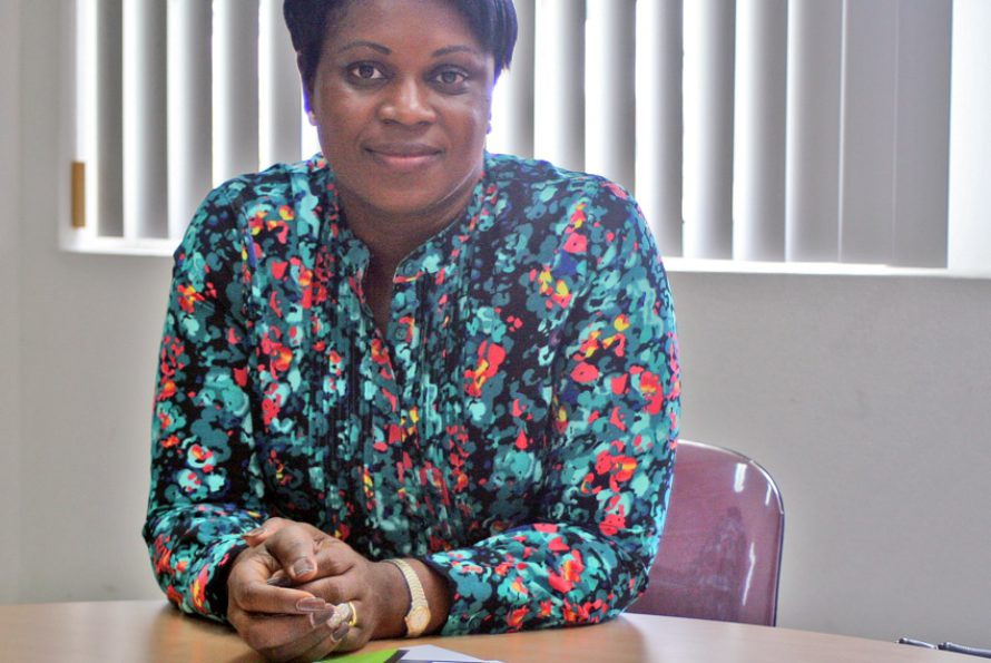 Elections parlementaires : Quand Sint-Maarten fait campagne à Saint-Martin