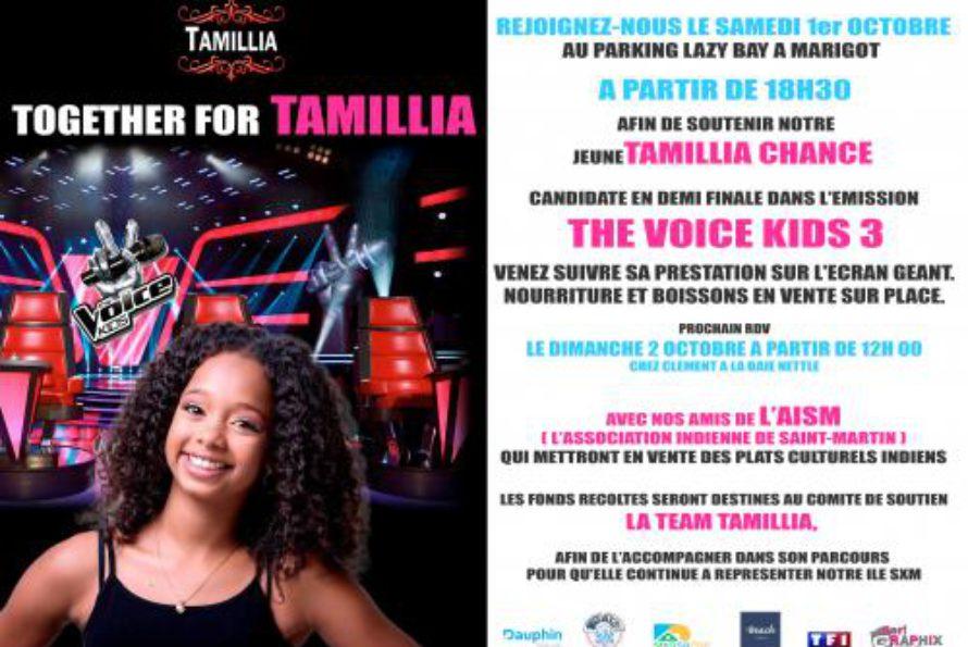 Saint-Martin : Tamillia sur écran géant samedi 1 octobre 2016