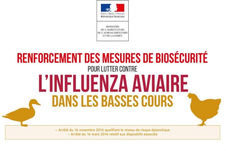 Influenza aviaire : Des experts caribéens formés à l'analyse cartographique des risques