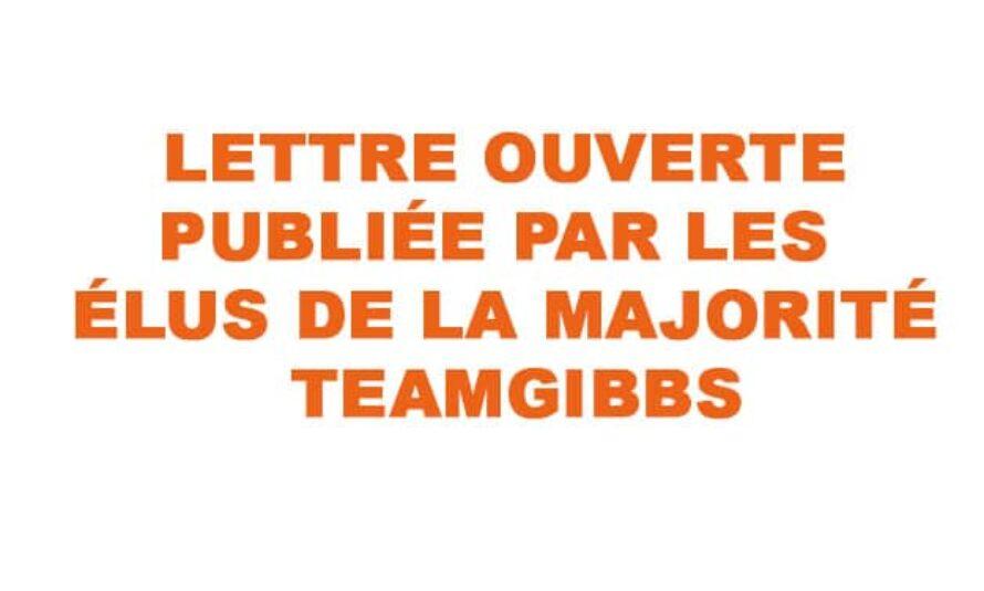 Saint-Martin : Lettre ouverte des conseillers territoriaux de la majorité Team Gibbs